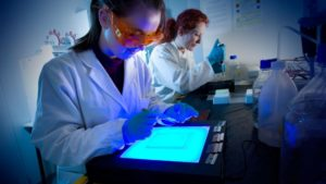 El duro techo de cristal de la mujer en la ciencia